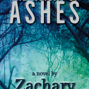 A Virtual Conversation with Zachary Steele | The Weight of Ashes
